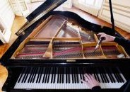 Lessons from a Blind Piano Tuner